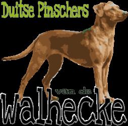 Van de Walhecke